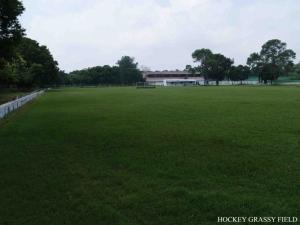 Hockey-Grassy-Field